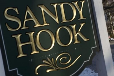 Sheeple Dogs: Sandy Hook School