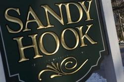 Sheeple Dogs: Sandy Hook School