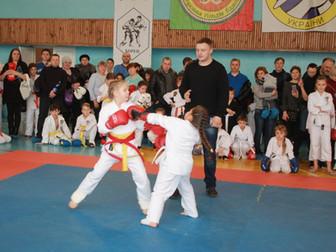 Ко Дню освобождения города в Кривом Роге прошел открытый чемпионат по рукопашному бою