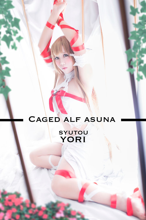 "Yori ""Caged Elf Asuna"" Photobook Set"