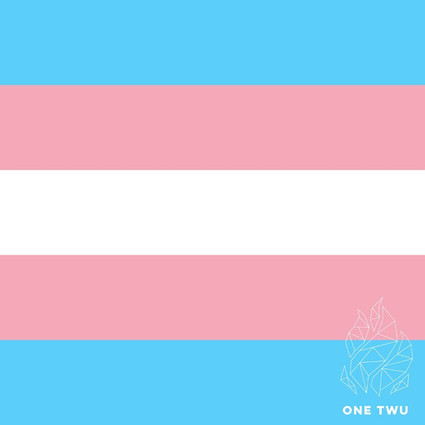 Trans Day Of Visibility.