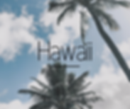 Hawaii-icon.png
