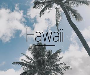 Hawaii-icon.png