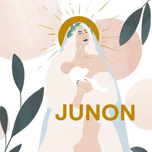 Package Junon