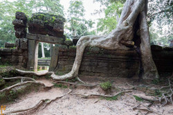 2014_Cambodge