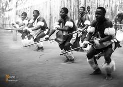 Afrique du Sud - Lesotho - Swaziland
