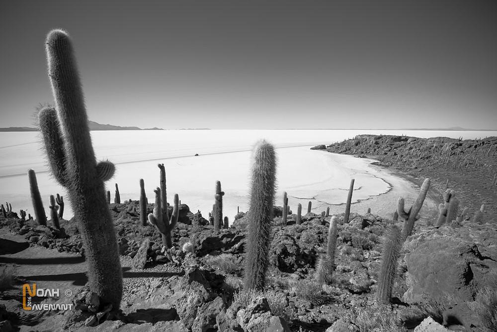 désert de sel d'Uyuni