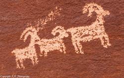 Ute Indian Petroglyphs