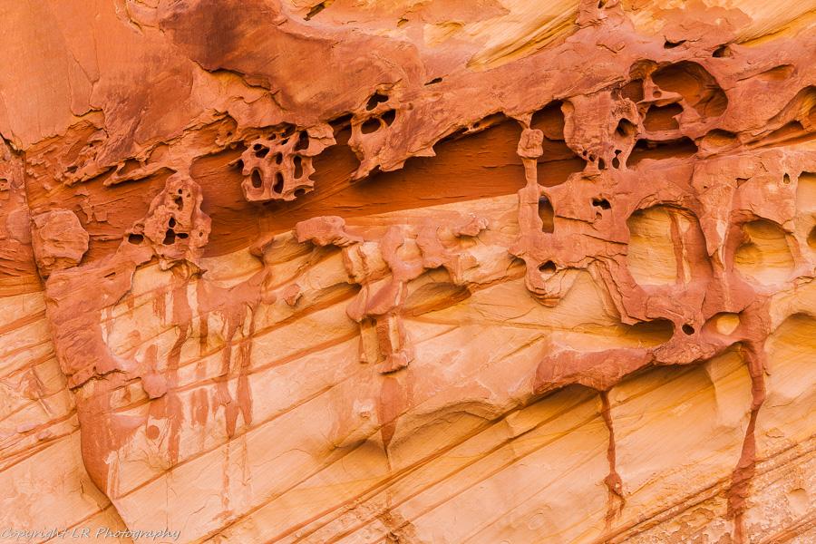 Eroded Sandstone Detail
