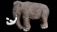 Mammut-Vorlage-3-remove-Hintergrund - Ko