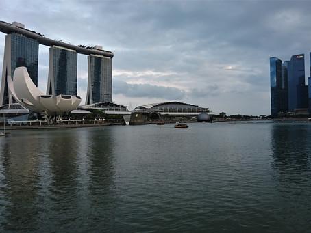 Stadt mit vielen Gesichtern - Singapur