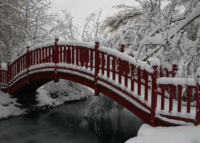 Photo hiver 2010 008.jpg