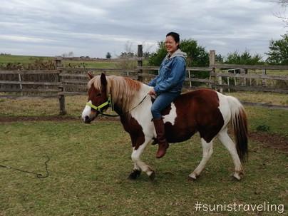 我在烏拉圭的馬場學會了馴馬 I Trained Horses In Uruguay