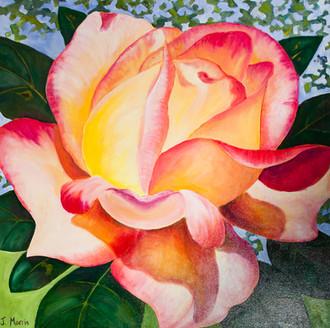 "Janet Morris ""Rose"" IMG_7129-20.jpg"