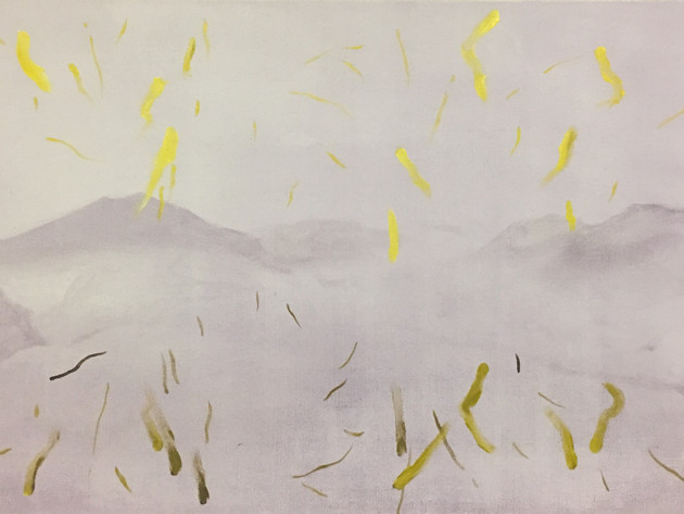 Barrage, 2017, oil on canvas 56 x 100 cm  • Available
