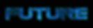 FUTURE_CIRCUIT_INLAY.png