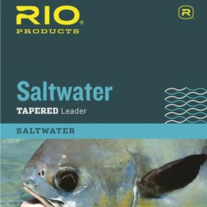 Rio Saltwater 10' Leader