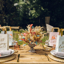 Emma's Plush Picnic Party - Your Best Day Ever