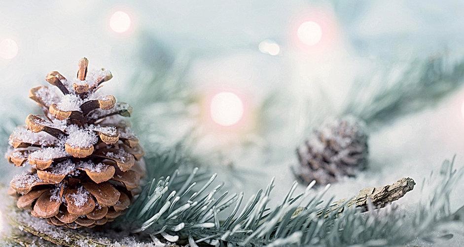 CP Christmas Banner_wix.jpg