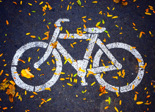 Survey Gauges North Texans' Opinions Toward Bicycling