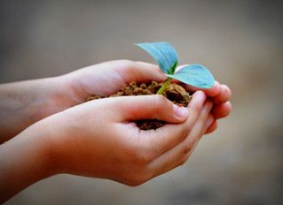 Help Our Giving Planet