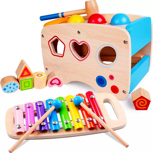 Multi Purpose Musical Toy