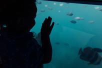 Family photography Seychelles