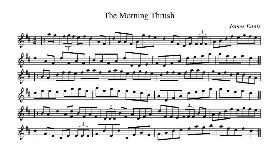 morningthrush.jpg