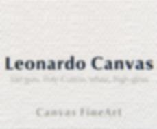 Leonardot-canvas---s.png
