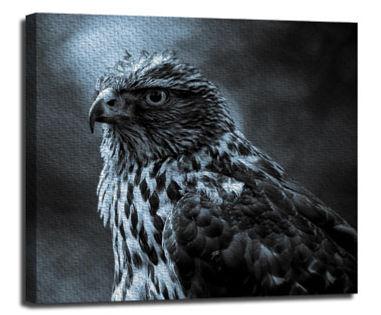 Canvas-6.jpg