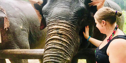 Hana meeting elephants, Khao Sok, Thailand