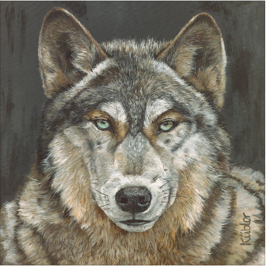 Wolf GEORGE
