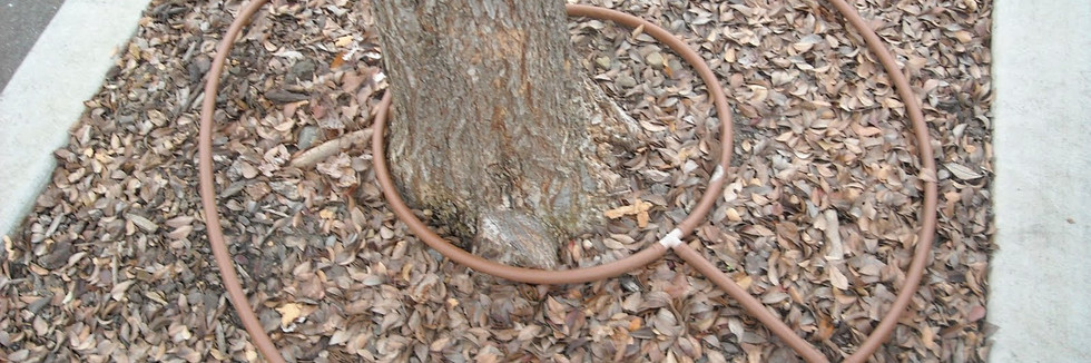 Toro circular tree island best horz.jpg