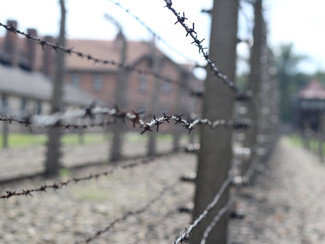 The Sorrowful Mysteries of the Holocaust