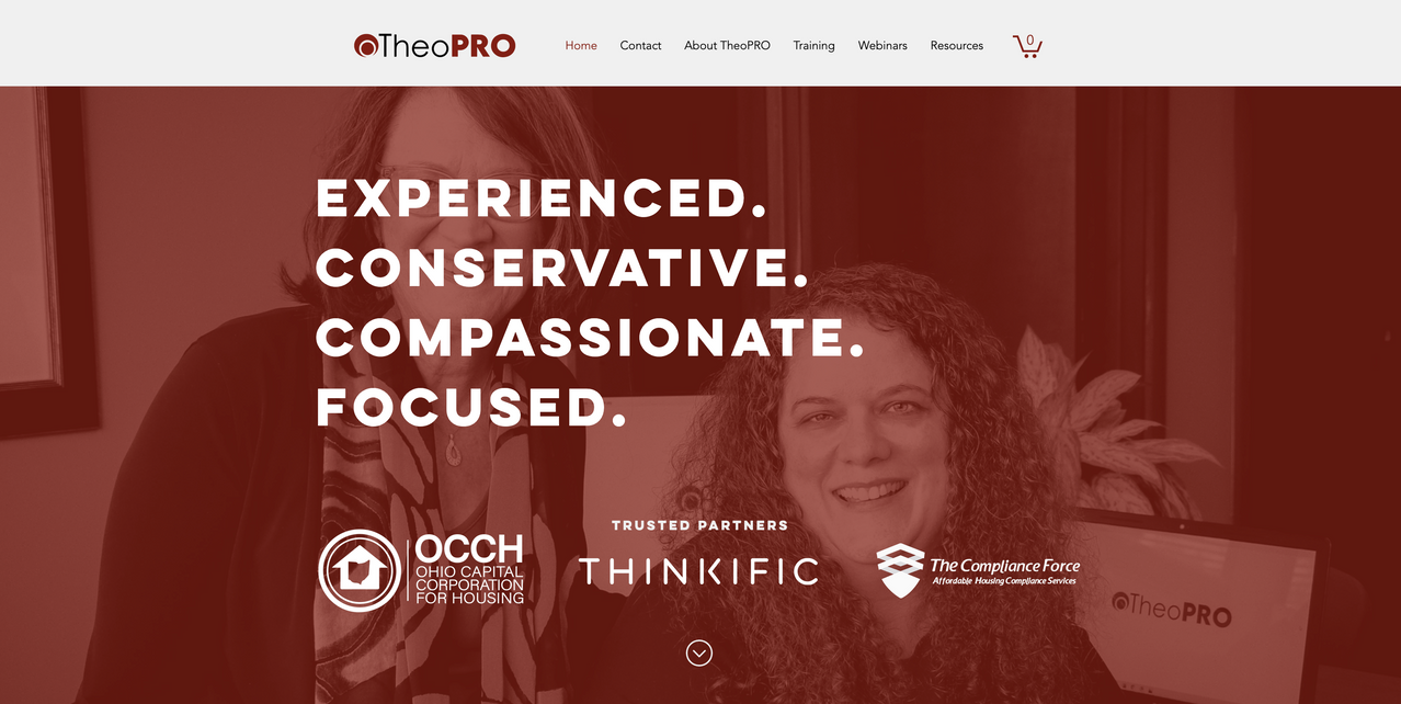 TheoPRO Logo and Website