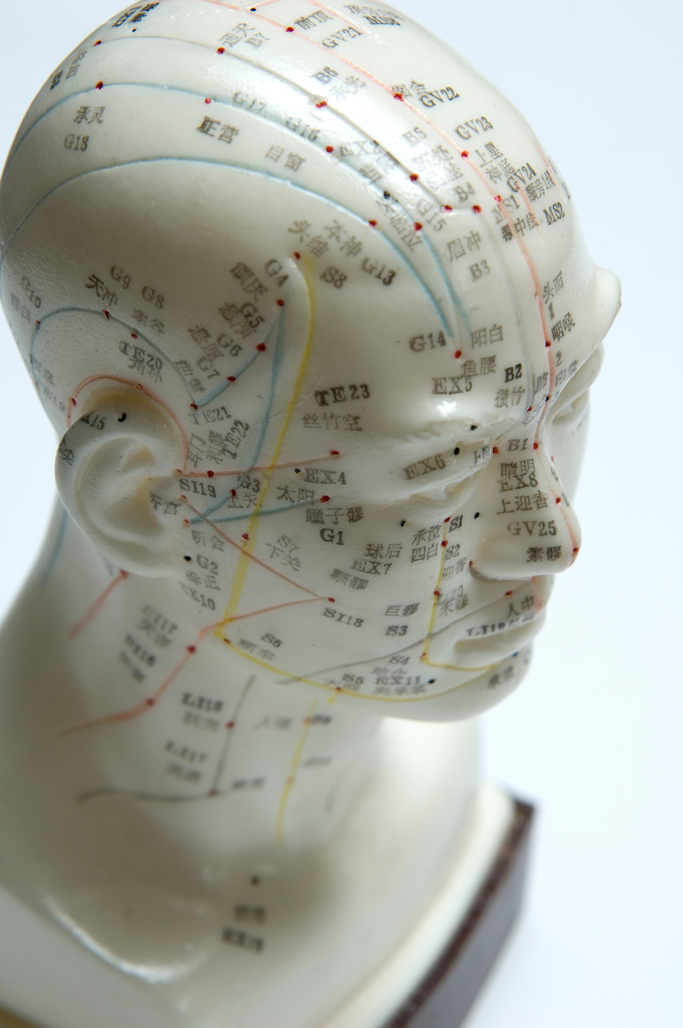 1st Appointment: FacialAcupuncture
