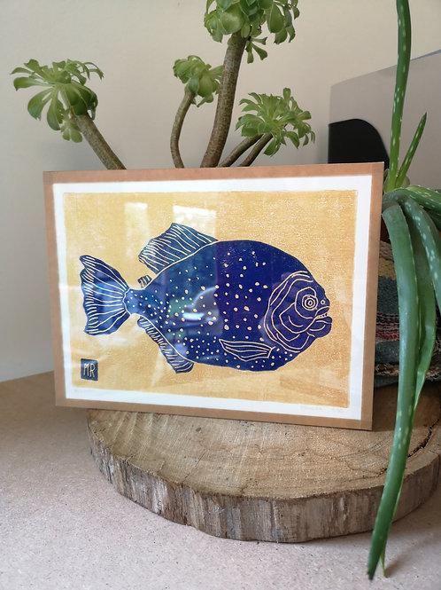 Piranha bleu & or