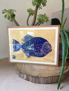 piranha-morganeroglianti