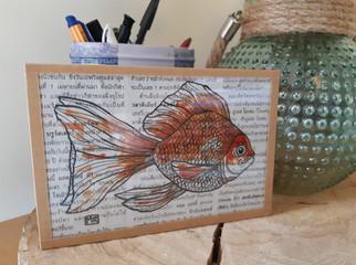 pp19-poisson-rouge-a-queue-eventail.jpg