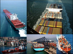 Container 17.jpg