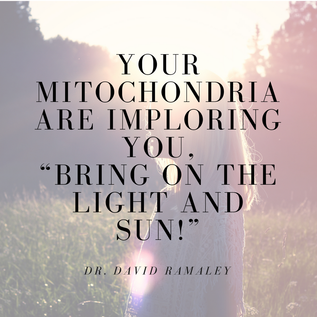 """Your_mitochondria_are_imploring_you,_""Bring_on_the_light_and_sun!"""