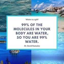 99% of the molecules in your body are water, so you are 99% water.