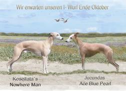 """"""" Love was in the air""""💕 Wir freuen uns auf unseren I- Wurf und bedanken uns bei Sabine We"""