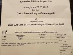 LS Weser-Ems 2017 Ostercappeln