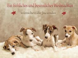 Allen Freunden, Verwandten und lieben Geschöpfen dieser Welt wünschen wir ein friedvolles, gesegnete