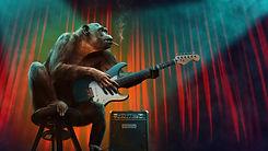 Imagem 22 macaco guitarra.jpg