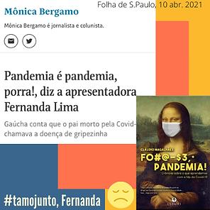Meme Fernanda.png