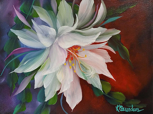 """Night Blooming Cereus"" 12"" x 16"" oil on canvas"