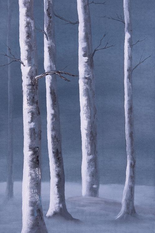 """Snow Birches"" 12"" x 24"" oil on canvas"