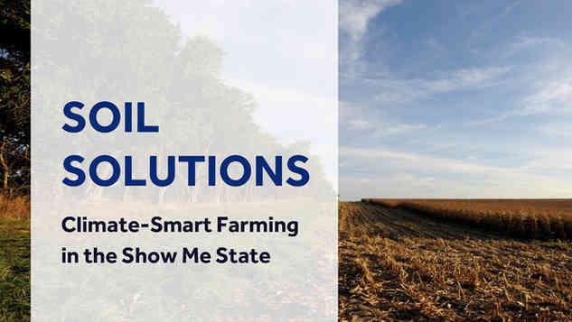 Print Design, Page Layout, Document Setup: Climate Central / Solutions from the Land